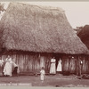 Thatched huts in the tropics