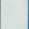 Laurencia tenuissima