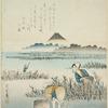 Gathering seaweed (nori)