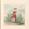 "Mounted watercolor of a lady gathering grapes, signed ""E. and C.P."", leaf 9 (recto)"