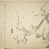 Plum blossom and bird