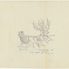"""Act II: Sketch of sleigh, notated """"The Nutcracker finale, New York City Ballet 1964"""""""