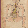 The human female body showing a fetus in the womb and other organs, fol. 46