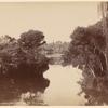 Botanical Gardens. Melbourne
