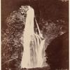 Lady Bowen Falls. Milford Sd., N. Z.