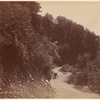 Hokitika Road near Kelly's G[...], N. Z.
