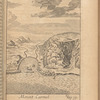 Mount Carmel, opp. p. 52