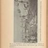 Colonia Penale Agricola di S. Bartolomeo (Condannati che accumulano il sale), Vol. 37, page 202