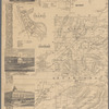 Map of Allegany Co., N.Y. from actual surveys