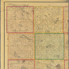 Map of Meeker County, Minnesota: drawn from actual surveys and the county records