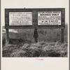 Employment signs in Spanish and English. These ranches (1938) increasingly use Negro pickers. Near Fresno, California.