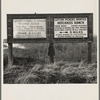 Employment signs in Spanish and English. These ranches (1938) increasingly use Negro pickers. Near Fresno, California