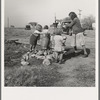 Water supply. Migratory camp for cotton pickers. San Joaquin Valley, California. American River camp.