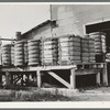 Bales of cotton on gin platform. Robstown, Texas