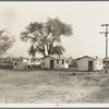 Housing for workers of the Frick Ranch, California. The condition and plan of this camp show marked influences of Resettlement Administration camps for migrants in this community.