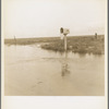 This year (1937) there are floods and heavy rains in the Dust Bowl. Texas