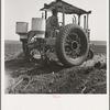 Tractor and operator. Navarro, Texas