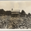 Sharecropper's cabin, cotton and corn, near Jackson, Mississippi
