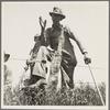 Day laborer near Oil City, Oklahoma. Carter County, Oklahoma.
