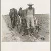 Ex-tenant farmer, now a day laborer on large cotton farm near Corsicana, Texas.