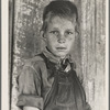Twelve year old son of a cotton sharecropper near Cleveland, Mississippi