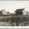 Cabins for sugarcane workers. Bayou La Fourche, Louisiana.