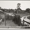 Careyville, northern Florida. The houses are deserted since the mill closed