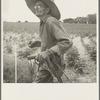 South Carolina sharecropper