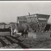 Farmyard scene. Farm of Farm Security Administration (FSA) rural rehabilitation client. Tulare County, California.