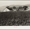 Contra Costa County, California. Stock ranch and plowed field.