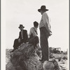 Near Shafter, California. Migratory laborers.