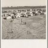 Farm Security Administration (FSA) migratory labor camp. Calipatria, Imperial Valley, California.