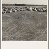 Calipatria, Imperial Valley. Feb. 1939. F.S.A. migratory labor camp (emergency)