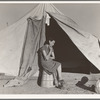Young migrant mother who lives in one of the tents. California. Farm Security Administration (FSA) emergency camp. Calipatria.