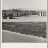 Arkansawyers auto camp, filled almost completely with Arkansas migrants. Greenfield, Salinas Valley, California. Rent ten dollars per month for one room and iron bed and electric light