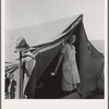 Migrant woman from Arkansas living in contractor's camp near Westley, California