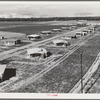 Tulare County, California. New homes for families on the Mineral King cooperative farms. This farm is situated on the site of an old ranch. Employs eighteen families; comprises 500 acres of alfalfa and cotton lands. Large-scale farming methods.