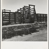 Fresno County on U.S. 99. See general caption. The end of the Chisholm Trail. Loading point for cattle shipment, showing cattle chute and part of corral.