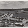 Same as 19635. General view of one end of camp showing three units of the camp, each with its sanitary building. Farmersville, Tulare County, California.