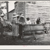 Families stringing tobacco brought in from the field by sled. Granville County, North Carolina.