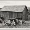 Western Washington, Thurston County, near Michigan Hill. Part of stump farm.