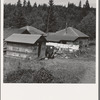 Western Washington, Grays Harbor County, Malone, Washington. Company houses of closed mill, now mainly occupied by Works Projects Administration (WPA) workers. See general caption number 37