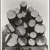 Oregon, Klamath County, near Klamath Falls. Pelican Bay Lumber Company. Logs hauled to the mill by flat car, then dumped into the mill pond. Note markings on logs. Mills brand their logs like cattle brands and there is likewise rustling of logs