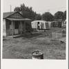 Washington, Yakima shacktown, (Sumac Park) is one of several large shacktown communities around Yakima. General caption number 26
