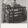 Farm boys from western Nebraska, now migrating farm workers on the Pacific Coast. Merrill, Klamath County, Oregon.