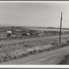 Camp of migrant potato pickers seen from potato shed across the road. [Tulelake], Siskiyou County, California. General caption number 63-1