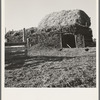 Two-year old barn, sage bush thatched (name: Hull). Dead Ox Flat, Malheur County, Oregon. General caption number 67-111.