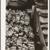 Fifty-pound bags of onions in storage shed, ready for market. Malheur County, Oregon.