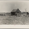 Barn on the Bodray farm. Tipler, Wisconsin