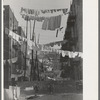 An avenue of clothes washings between 138th and 139th Street apartments, just east of St. Anne's Avenue, Bronx, New York